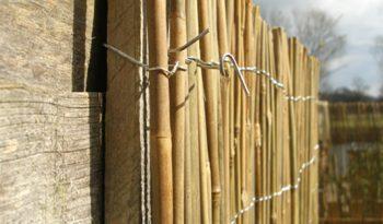 Mobili in bambù, ecologia e risparmio